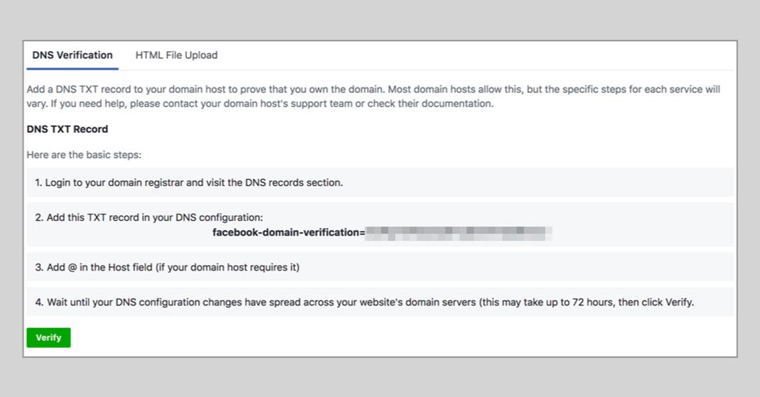 Das Bild zeigt einen Screenshot der DNS Verification.