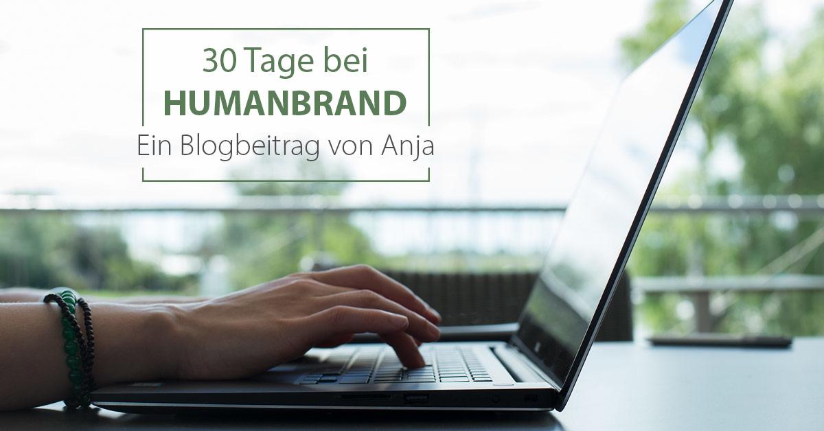 Auf einem Tisch steht ein aufgeklappter Laptop und zwei Hände tippen auf der Tastatur. Darüber ist ein Box mit der Schrift: 30 Tage bei HUMANBRAND - Ein Blogbeitrag von Anja