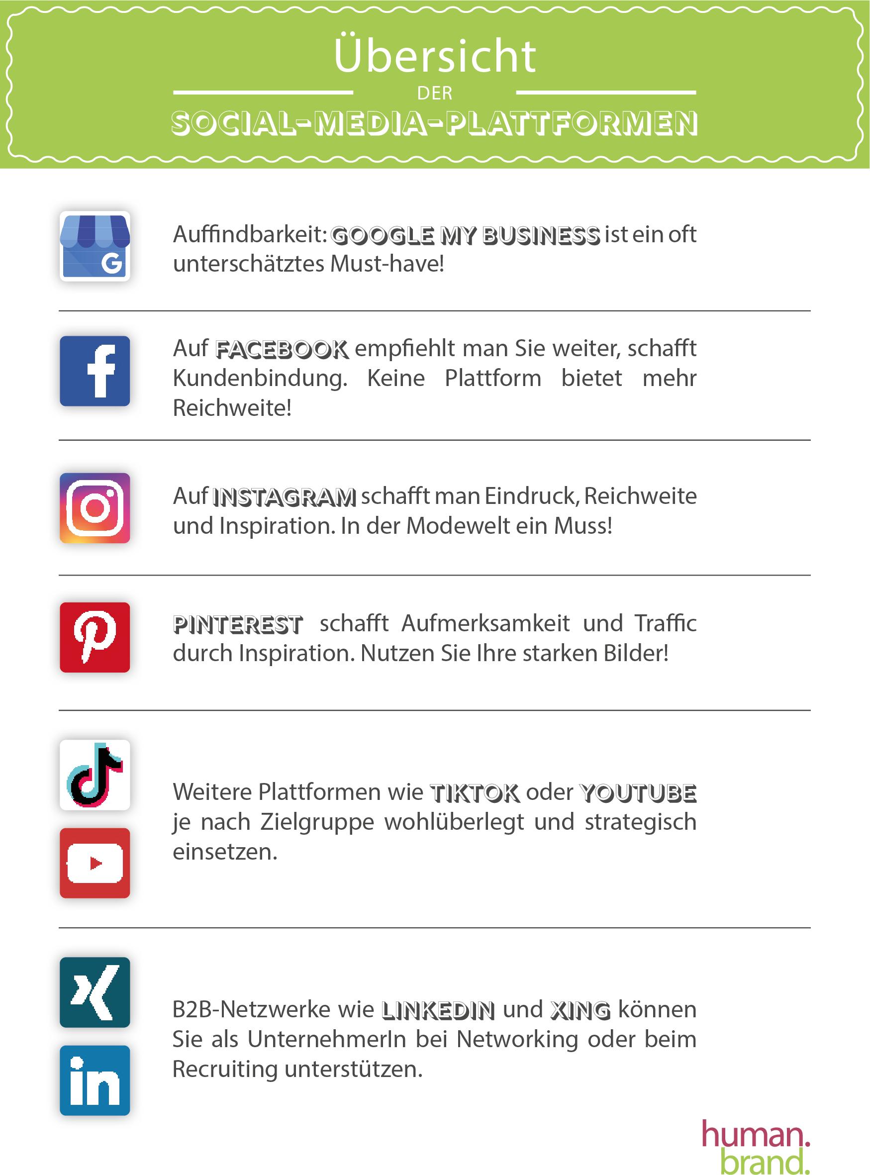 Social-Media-Plattformübersicht